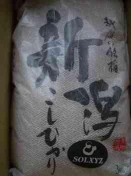 ソルクシーズ0809.JPG